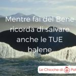 Ognuno salvi le proprie balene